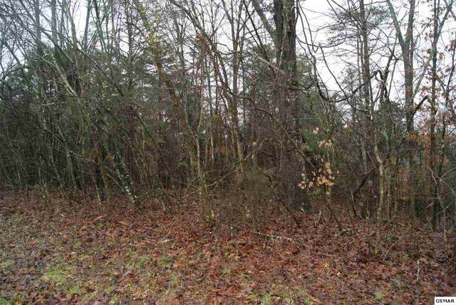 Four -M Circle, Sevierville, TN 37862 (#226901) :: Four Seasons Realty, Inc