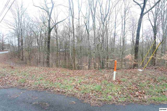 Parcel 7 Sims Rd, Sevierville, TN 37876 (#226911) :: Four Seasons Realty, Inc