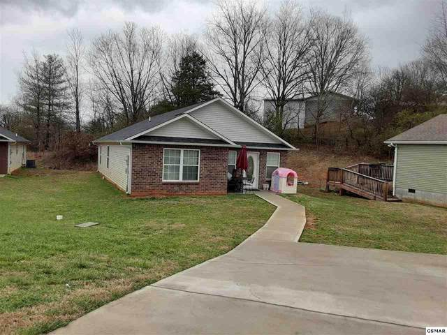 1507 Patricia Holt Blvd, Sevierville, TN 37862 (#226921) :: The Terrell Team