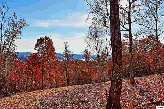 Lot 363 W Mountain Dr, Rockwood, TN 37854 (#226937) :: The Terrell Team