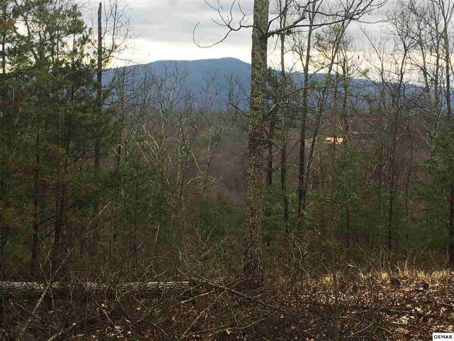 Lot 18E Stackstone Road, Sevierville, TN 37862 (#226960) :: Four Seasons Realty, Inc