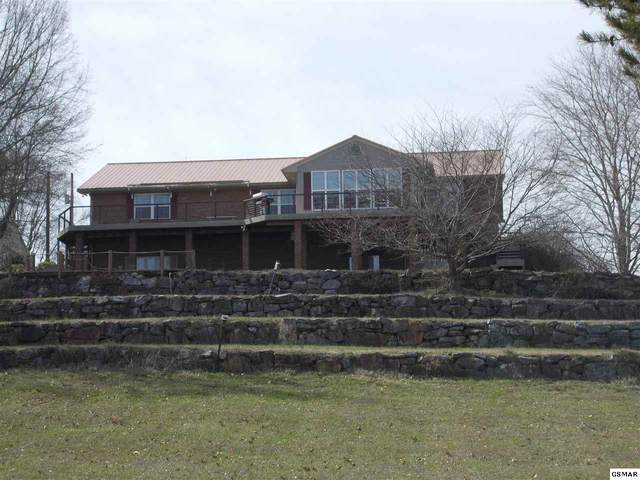 984 Harrison Ferry Rd, White Pine, TN 37890 (#226975) :: The Terrell Team