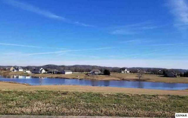 Lot 126 Fair Meadow Dr, Dandridge, TN 37725 (#227006) :: Four Seasons Realty, Inc