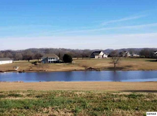 Lot 125 Fair Meadow Dr, Dandridge, TN 37725 (#227007) :: Four Seasons Realty, Inc