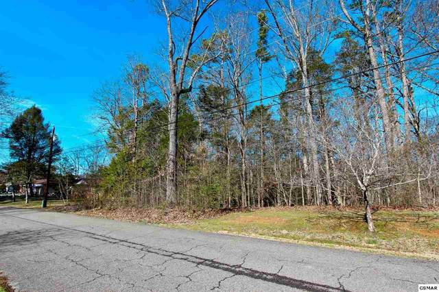 LOT 4 Green Acres Dr, Newport, TN 37821 (#227012) :: Billy Houston Group