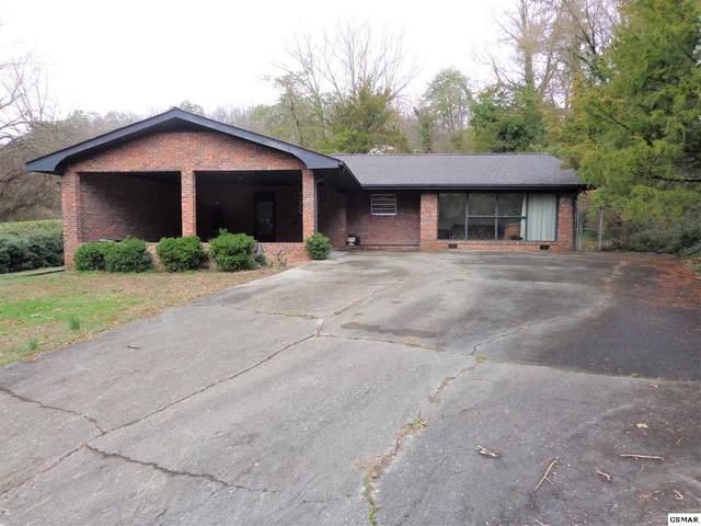 504 Red Oak, Newport, TN 37821 (#227017) :: Jason White Team | Century 21 Four Seasons