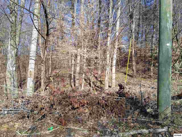 Lot 77 Muscadine Ct, Sevierville, TN 37876 (#227019) :: Four Seasons Realty, Inc