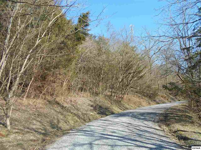 Tract 1 High Country Rd, Cosby, TN 37722 (#227025) :: Colonial Real Estate