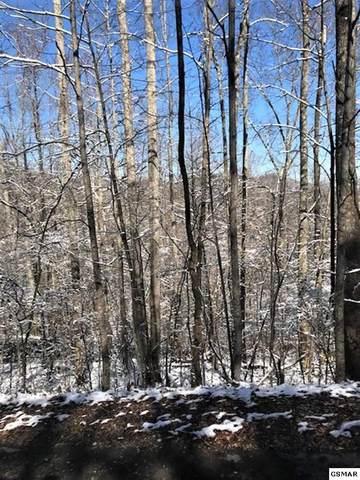 LOT 9 Burning Tree Lane, Sevierville, TN 37862 (#227032) :: The Terrell Team