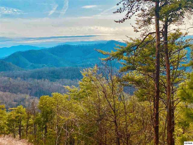 Lot 102E Deerskin Road, Sevierville, TN 37862 (#227034) :: The Terrell Team