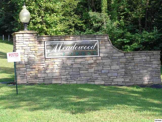 Lot 16 Meadowood Rd, Newport, TN 37821 (#227068) :: Colonial Real Estate