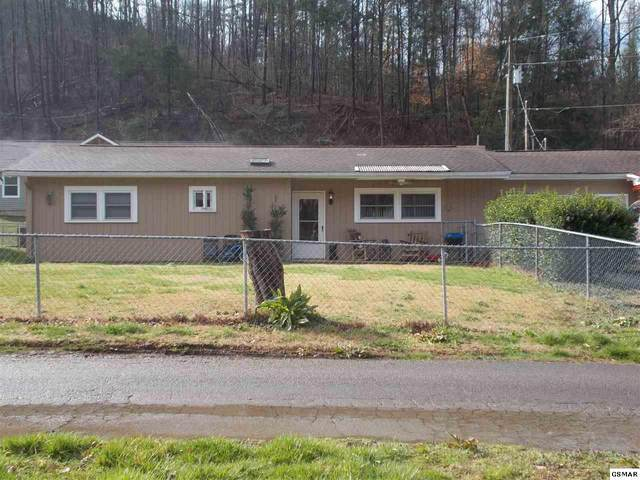 204 Willow Way, Gatlinburg, TN 37738 (#227098) :: The Terrell Team