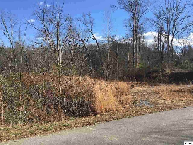 Sanctuary Shores Lot 15, Sevierville, TN 37876 (#227106) :: Four Seasons Realty, Inc