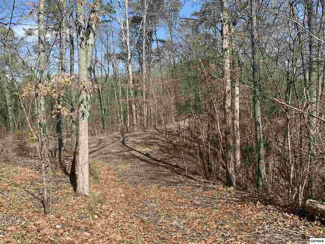 Lot 19-R Indian Creek Road, Dandridge, TN 37725 (#227118) :: The Terrell Team