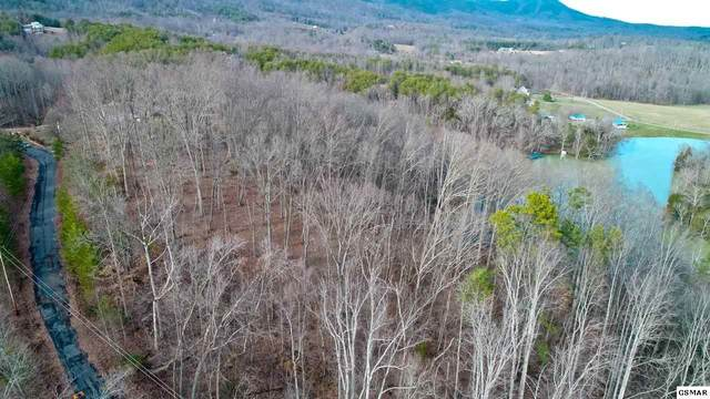 LOT 8-A Meadow Brooke Way, Cosby, TN 37722 (#227119) :: Billy Houston Group
