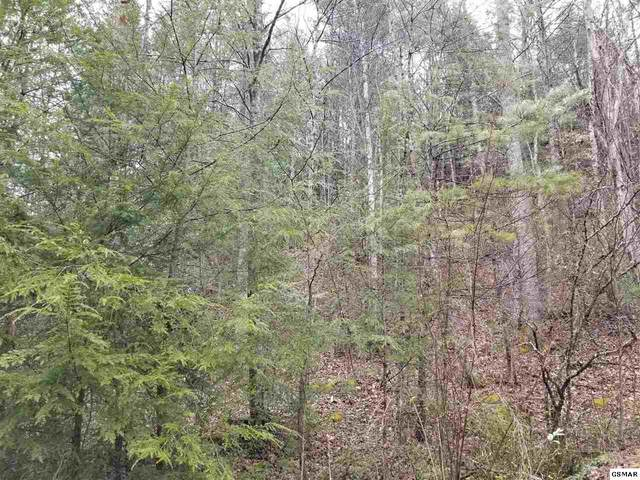 Bruce Ogle Way Tract 2, Pigeon Forge, TN 37863 (#227128) :: Four Seasons Realty, Inc