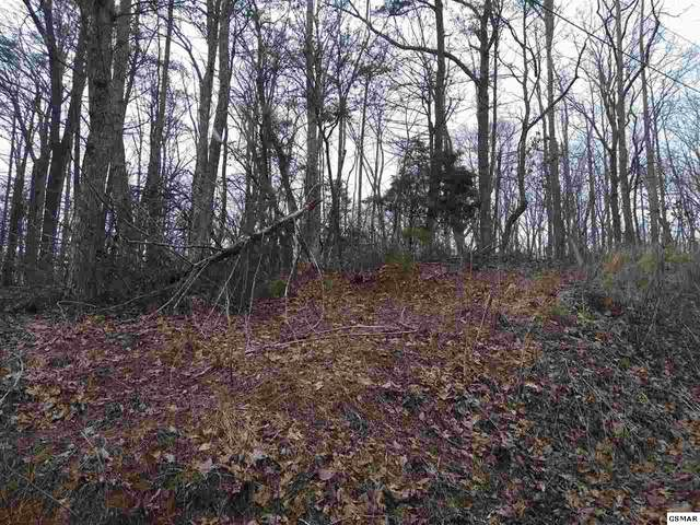 Lot 811 Ash Pass, Sevierville, TN 37876 (#227171) :: Prime Mountain Properties