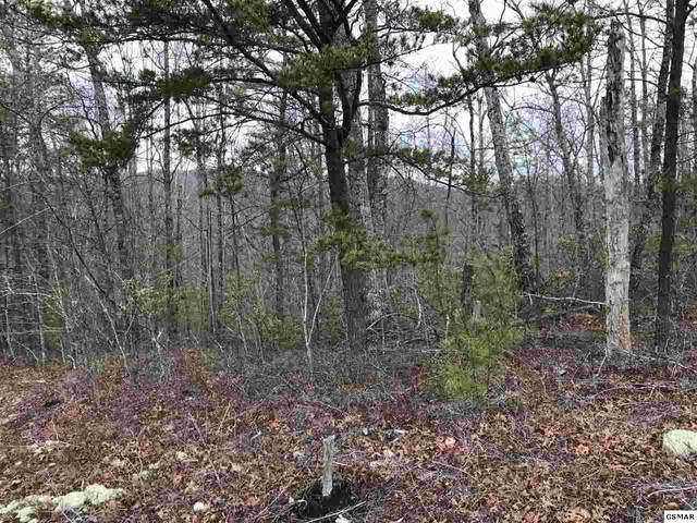 Lot 13 Misty Ct., Sevierville, TN 37862 (#227188) :: Four Seasons Realty, Inc
