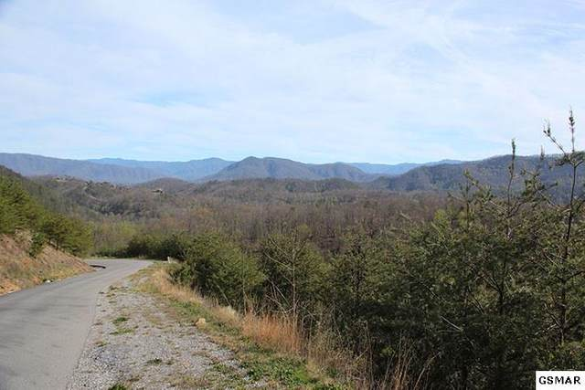 Lot 166e Jones Creek Ln, Sevierville, TN 37862 (#227228) :: The Terrell Team