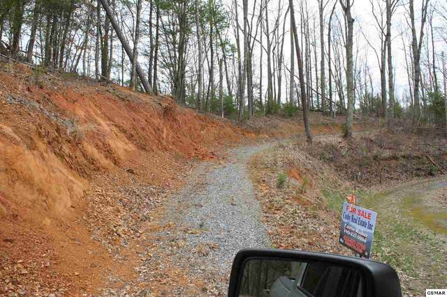 Breezy Trail Parcel 118 008., Cosby, TN 37722 (#227314) :: Billy Houston Group