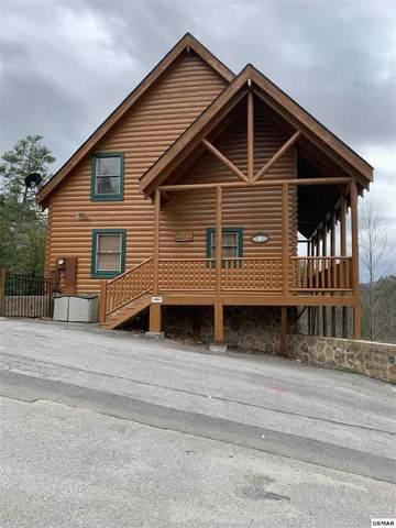 1045 Black Bear Cub Way Paulk's Paradis, Sevierville, TN 37862 (#227316) :: Colonial Real Estate