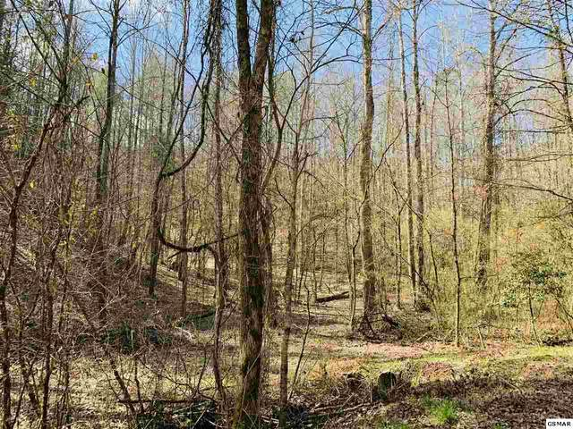 Lot 9 Sulpher Springs Road, Sevierville, TN 37862 (#227320) :: Colonial Real Estate