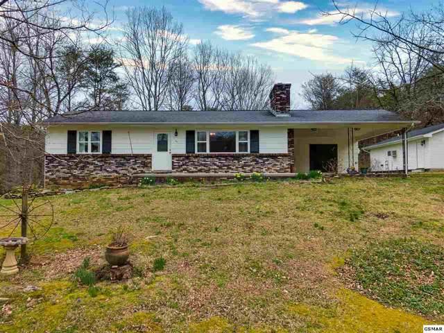 4153 Butterfly Gap Loop, Maryville, TN 37803 (#227337) :: Jason White Team | Century 21 Four Seasons