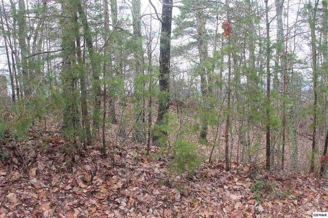 Lot 63 Twin City Way, Pigeon Forge, TN 37863 (#227400) :: Colonial Real Estate