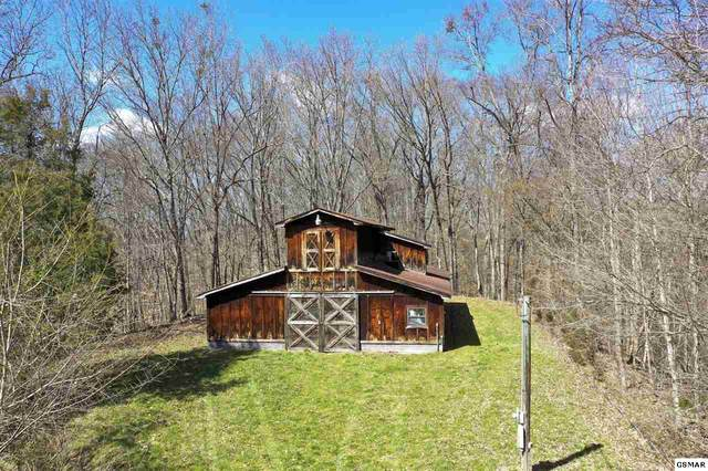180 White Hollow Way, Bybee, TN 37713 (#227437) :: Colonial Real Estate