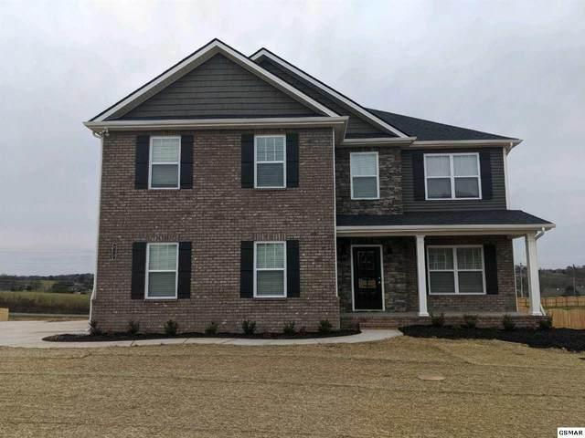 213 Bluff Shadows, Seymour, TN 37865 (#227453) :: Colonial Real Estate