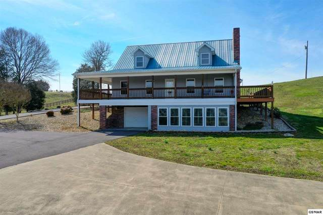 916 Harrison Ferry Rd, White Pine, TN 37890 (#227458) :: Colonial Real Estate