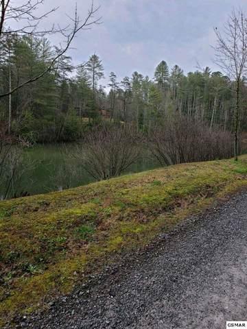 Lot 1 Overlook View Rd Saddle Ridge - , Walland, TN 37886 (#227463) :: Four Seasons Realty, Inc