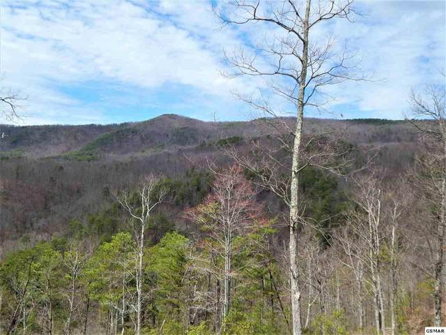 Lot 173 Smoky Bluff Trail, Sevierville, TN 37862 (#227485) :: Four Seasons Realty, Inc