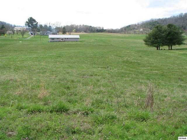 Lot 69 Scenic Dr., Dandridge, TN 37821 (#227487) :: Billy Houston Group