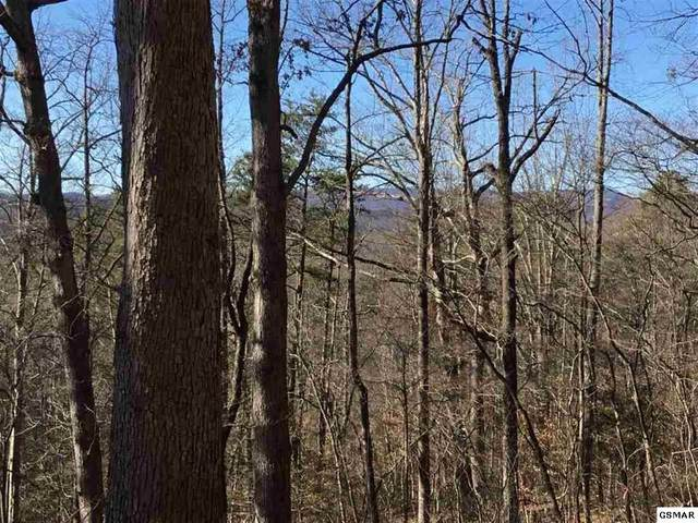 Lot 1 Clabo Mtn Way, Sevierville, TN 37862 (#227488) :: Four Seasons Realty, Inc
