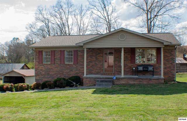 1021 Nease Drive, White Pine, TN 37890 (#227496) :: The Terrell Team