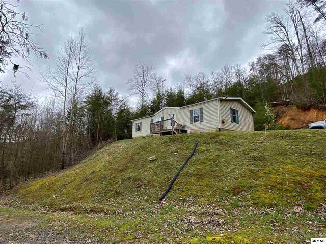 1423 Honeysuckle Ln, Sevierville, TN 37876 (#227507) :: Colonial Real Estate