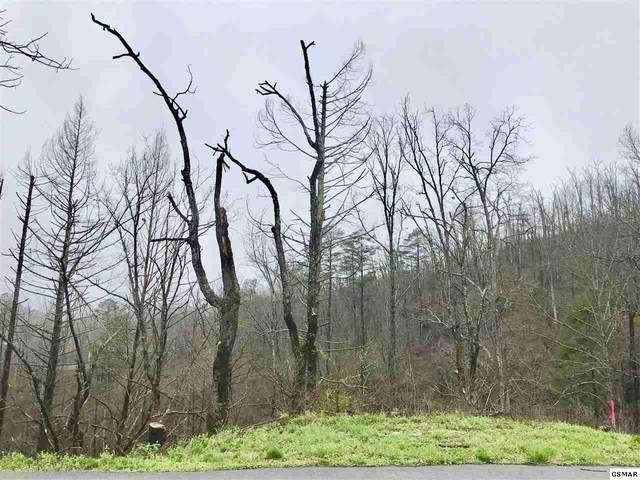 714 Old Ridge Rd, Gatlinburg, TN 37738 (#227531) :: Jason White Team | Century 21 Four Seasons