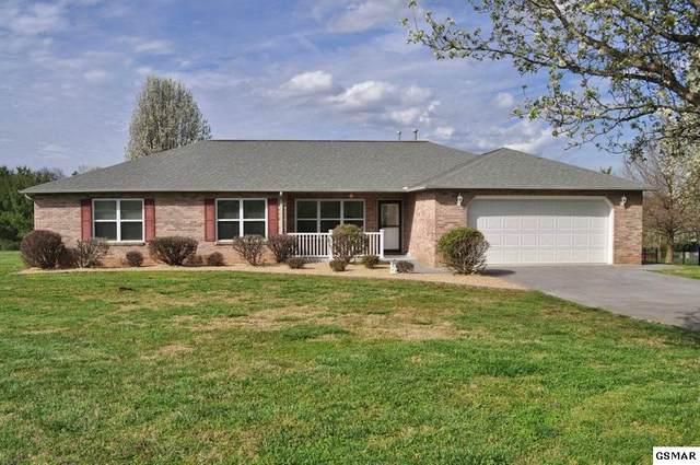 1439 Glen Ray Lane, Sevierville, TN 37876 (#227553) :: Colonial Real Estate