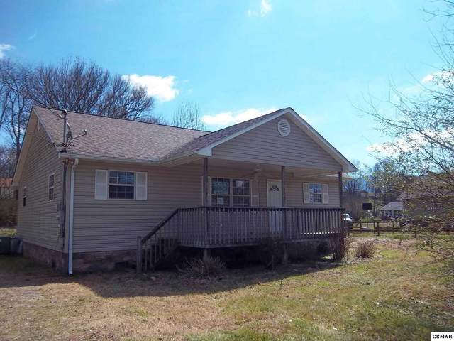 936 Nibor Way, Newport, TN 37821 (#227555) :: Billy Houston Group