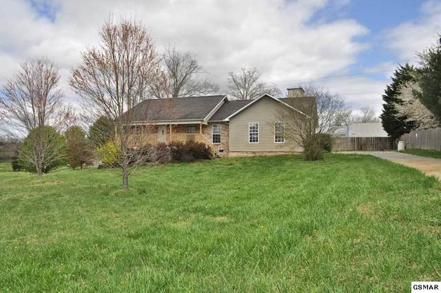 1009 Towns View Drive, Seymour, TN 37865 (#227578) :: Billy Houston Group