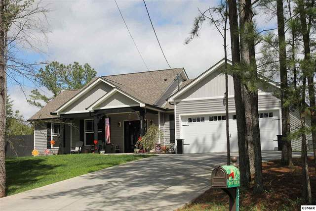 2002 Big Chiefs Skyview Dr, Sevierville, TN 37876 (#227590) :: Colonial Real Estate