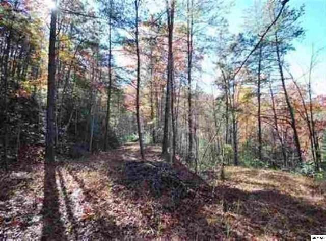 Lot 49 Jefferson Road, Gatlinburg, TN 37738 (#227596) :: Jason White Team   Century 21 Four Seasons