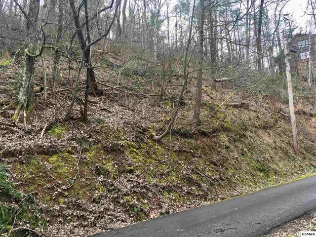 Lot 1140 Beach Front Drive, Sevierville, TN 37876 (#227609) :: Tennessee Elite Realty