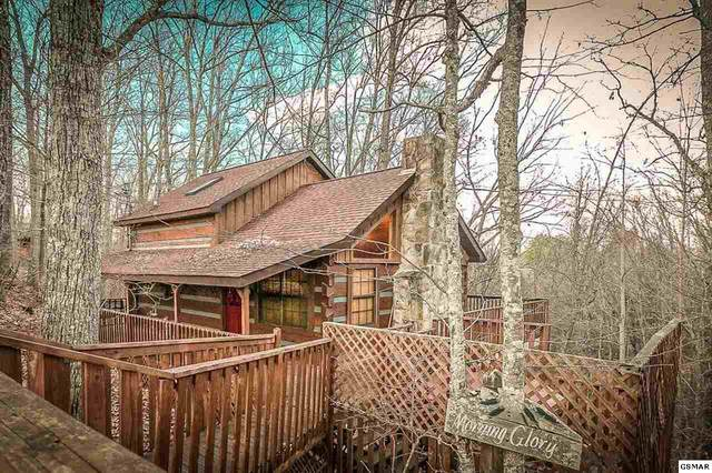 1516 Ginnys Trl, Sevierville, TN 37876 (#227616) :: Colonial Real Estate