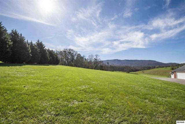 Lot 11 Green Pasture Lane, Sevierville, TN 37876 (#227621) :: Four Seasons Realty, Inc