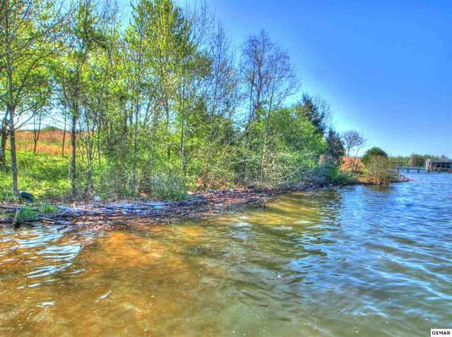 Lot 428 Pointe Vista, Rockwood, TN 37854 (#227622) :: The Terrell Team