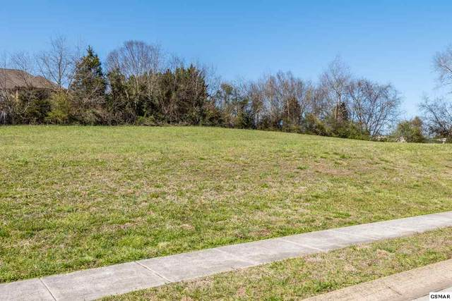 Lot 19 Rippling Waters Circle, Sevierville, TN 37876 (#227625) :: Prime Mountain Properties