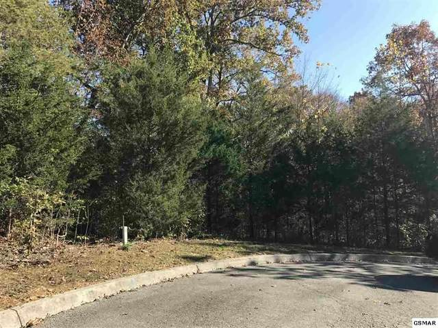 Lot 18 Warbler Pt, Sevierville, TN 37876 (#227631) :: Tennessee Elite Realty