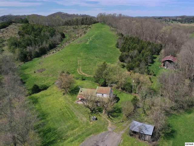 2400 Hall Road, Dandridge, TN 37725 (#227641) :: Jason White Team | Century 21 Four Seasons
